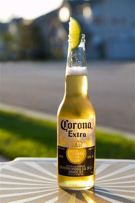 corona light alcohol content what is your favorite alcoholic beverage girlsaskguys