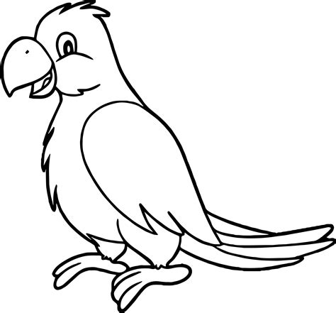 pirate parrot coloring pages sweet parrot coloring page