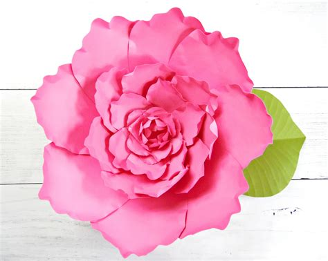 paper flower peony tutorial giant peony paper flower tutorial catching colorlfies