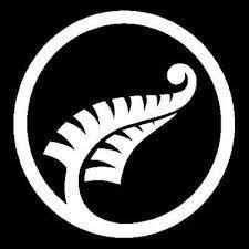 image result  stunning silver fern logo images atsilver