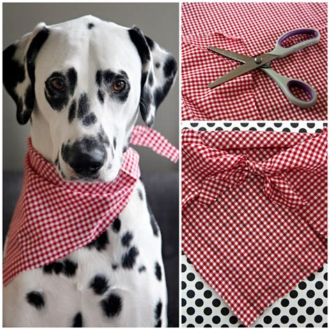 puppy bandanas dalmatian diy easy no sew pet bandana