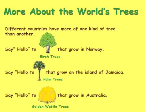 the about trees more about trees