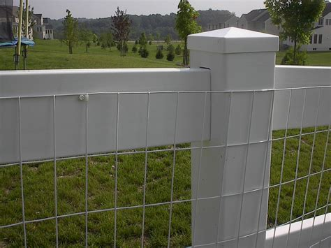 white wire mesh fencing 15 white vinyl coated welded wire mesh attached w