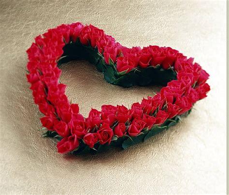 Cantik Tiara Bunga bunga cinta qt cinta dari hati
