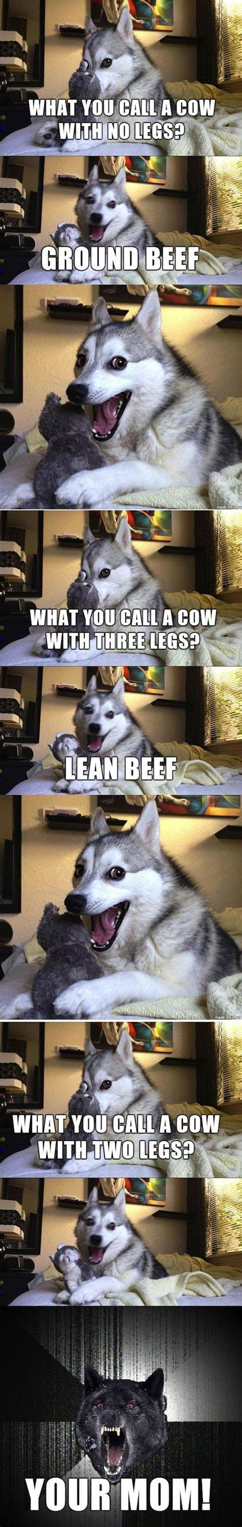 Pun Husky Meme - 48 best images about puns on pinterest jokes dad