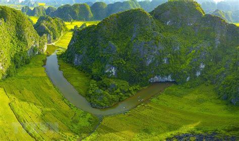 golden ripe paddy fields   hang mua peak news