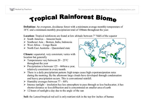 Of The Rainforest Essay by Rainforest Essay Etdlibtutr X Fc2