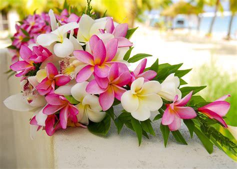 fiori matrimonio fiori tropicali per un matrimonio esotico come usarli e
