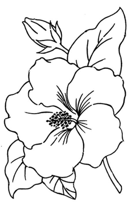 tatuaggi fiori tropicali 꽃그림 도안 flower painting design 꽃문양 밑그림 네이버 블로그