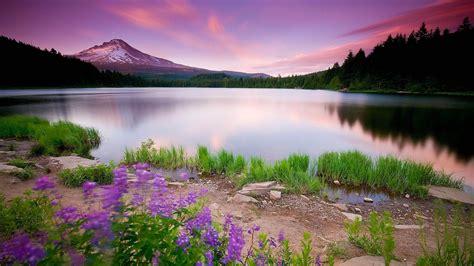 imagenes de paisajes lugubres paisajes fondos de computadora related keywords paisajes