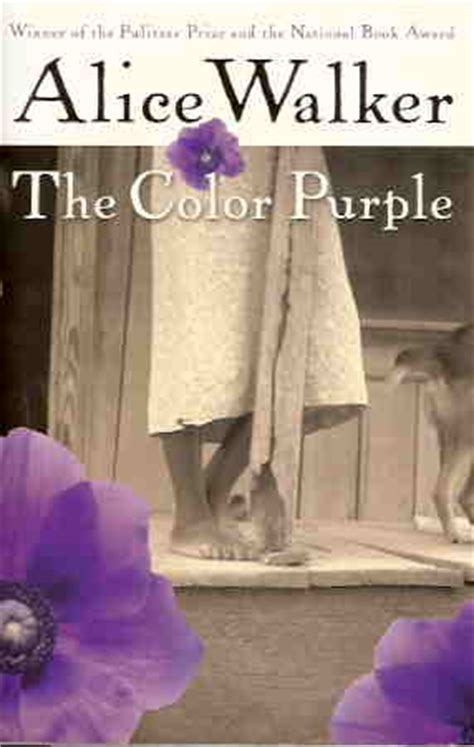 color purple novel summary book review the colour purple by walker skylightrain