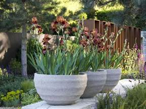 10 ideas for using large garden containers hgtv