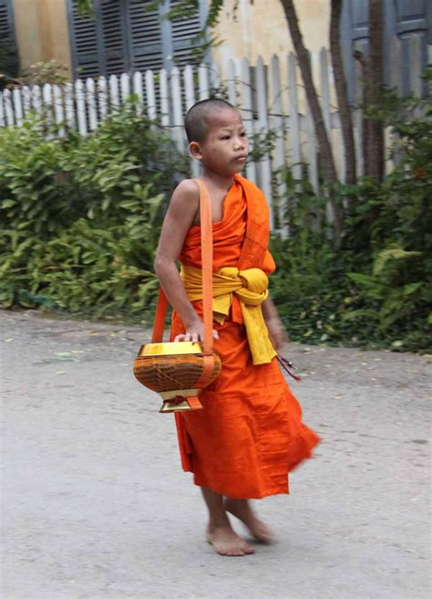 What Has A Monk Got To Do With Breast Enhancement by Laos Luang Prabang Colorful Monk S Alms Procession Is A