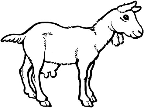 free coloring book free printable goat coloring pages for