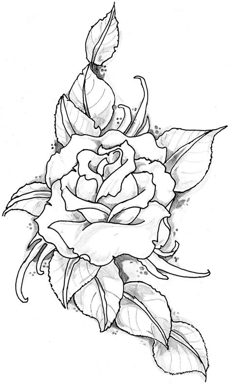 rose drawing tattoo image by eltattooartist on deviantart