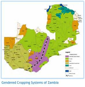 awn rainfall zambia country updates project agricultural water