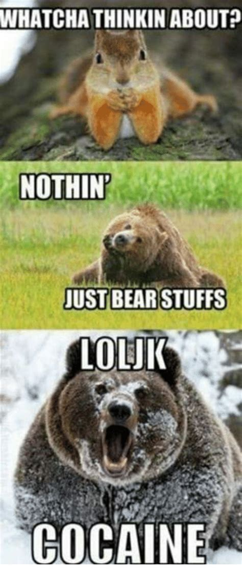 Bear Stuff Meme - 25 best memes about bear stuff bear stuff memes