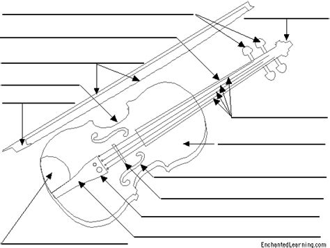 labelled diagram of a violin label the violin printout enchantedlearning