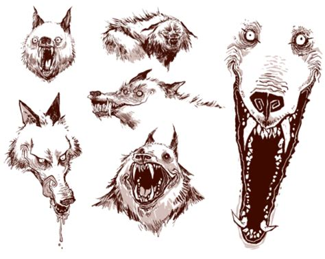 wolf sketch on