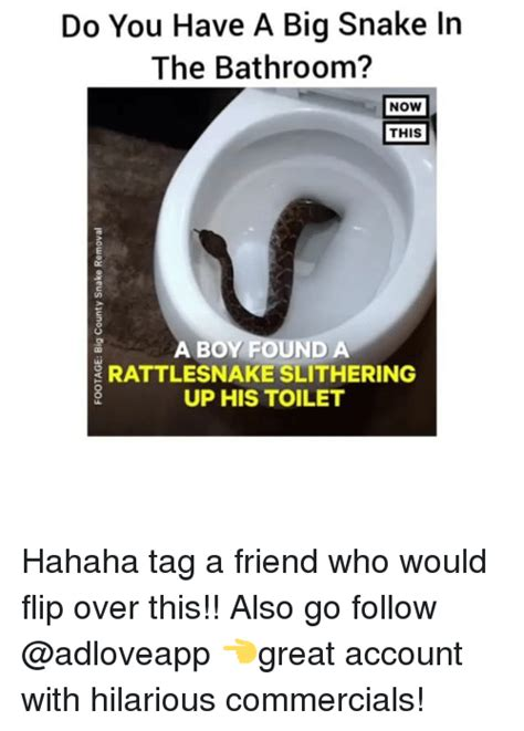 do you have to go to the bathroom in spanish 25 best memes about rattlesnake rattlesnake memes