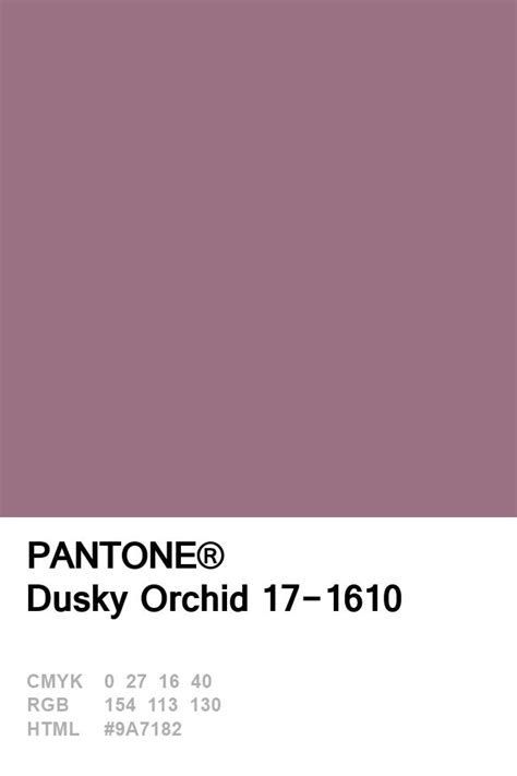 pantone color swatches best 25 pantone swatches ideas on pantone