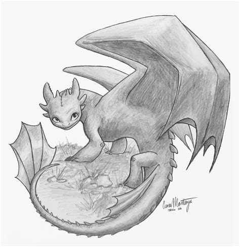 toothless by catsandscales on deviantart