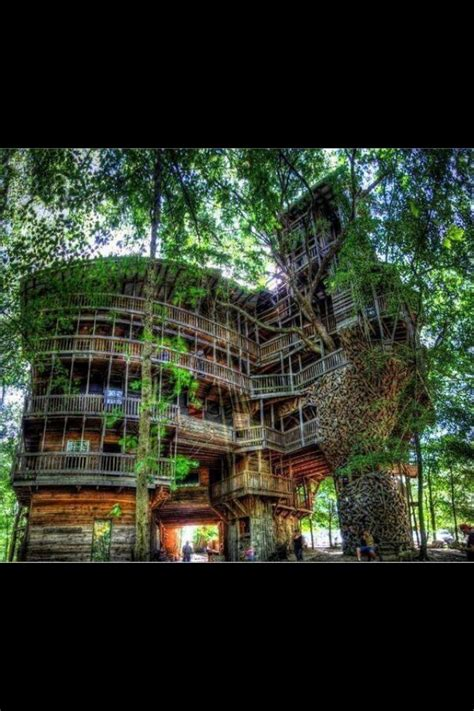 coolest tree houses coolest tree house ever tree house pinterest