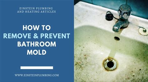 how to prevent mold in bathroom remove and prevent bathroom mold your plumbing hvac