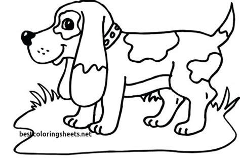 coloring pages of horses and puppies new coloring pages of dogs cats and horses best coloring
