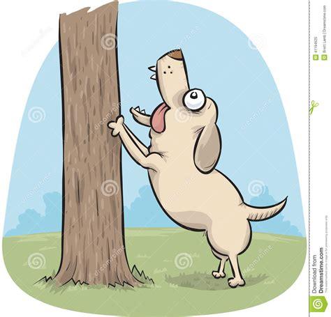 Dog Barking Up A Tree Stock Illustration   Image: 41194625