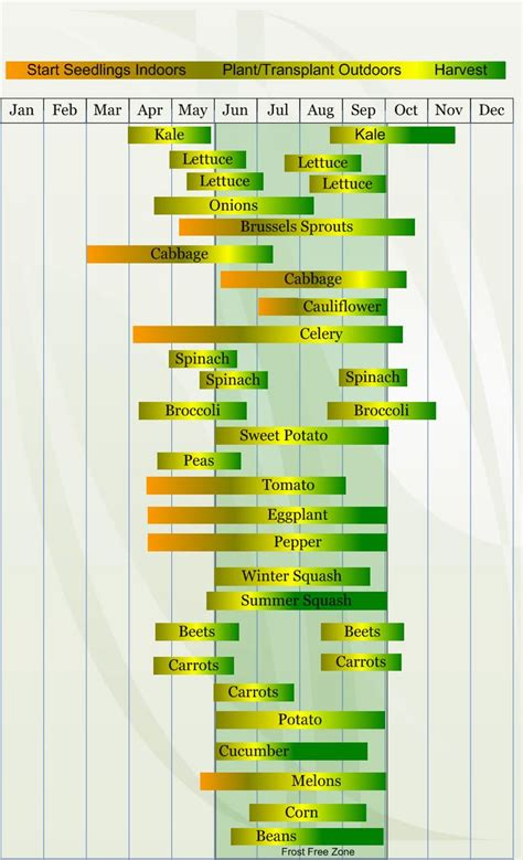 Vegetable Gardening Calendar 17 Best Images About Gardening When To Plant On