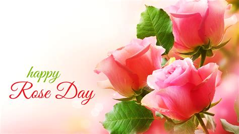 Happy Day Pink 7th feb day wallpaper hd all color of roses for lover friends