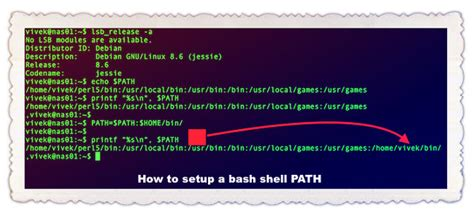 bash filename pattern how to add to bash path permanently on linux nixcraft
