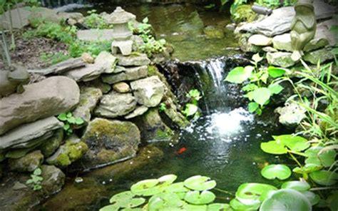 pond supplies my garden supplies