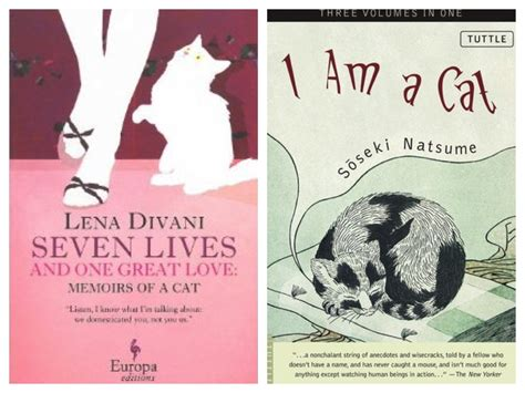 i am a cat books cat fiction for feline fanatics