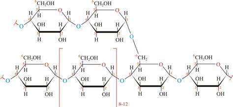 carbohydrates glycogen glycogen chemistry dictionary glossary
