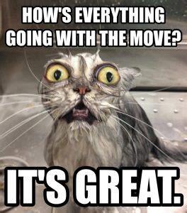 Moving Day Meme - westward ho unto adoption