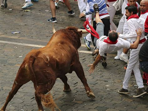 Running With The Bulls running of the bulls injuries provincial archives of