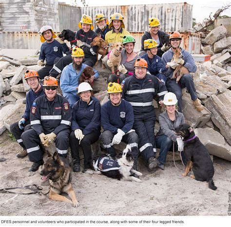 Search Au Extraordinary Dogs Search Rescue Dogs Organisation In Australia