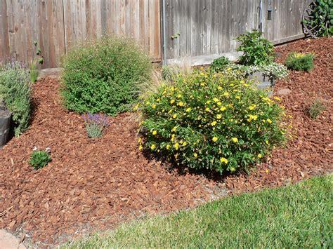 garden bark landscaping garden bark compost direct ltd compost direct ltd bark mulch fine