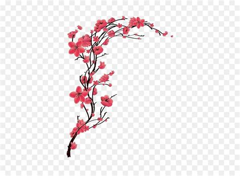 cherry blossom tattoo red peach  transprent png
