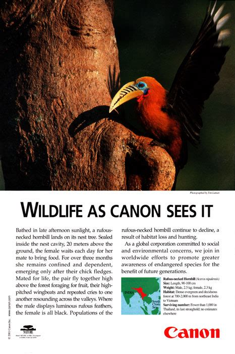 Canon Ad In National Geographic January 2001 Commercial