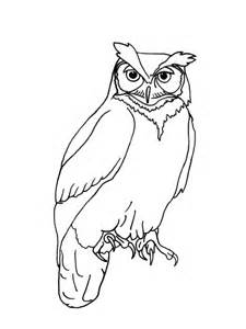 realistic owl outline