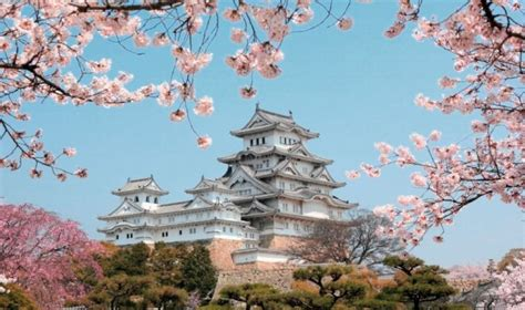 imagenes de shimada japon jap 243 n tiene costumbres muy ins 243 litas para conocer como