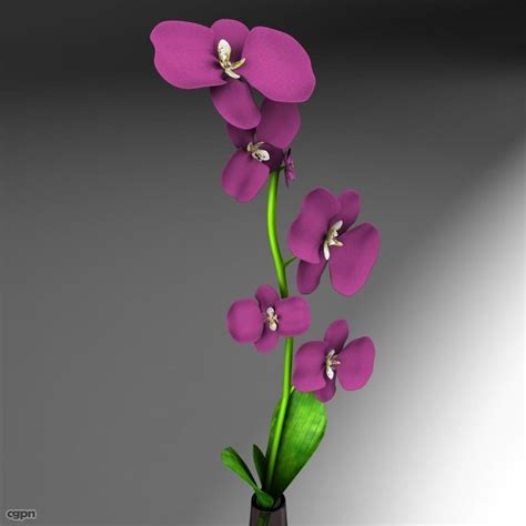 3d Flower Vase by Flower Vase 3d Model Cgstudio