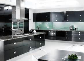 Black Kitchen Cabinets by Cabinets For Kitchen Black Kitchen Cabinets