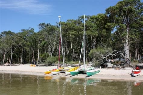 catamaran hotel dog friendly boreen point cground family friendly cing the review