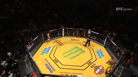 pic ufc  octagon canvas turns yellow  special
