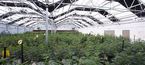 greenhouses in florida florida greenhouse design home design ideas