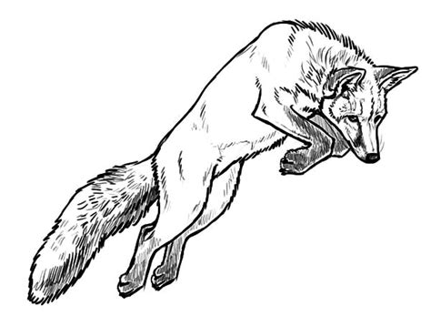 kit fox coloring page fox animals coloring pages the f for fox coloring page